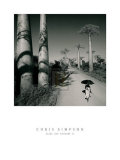 Allee des Baobabs II Prints by Chris Simpson