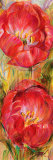 Spring Fling II Prints by Liv Carson
