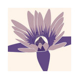 Water-Lily Prints by Emily Burrowes
