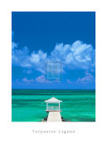 Turquoise Lagoon Prints by Peter Adams