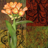 Clivia I Prints by Jan Sacca