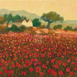 Poppy Field near Aix-En-Provence Prints by Hazel Barker