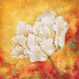 Peony Dawn I Prints by Sophia Sanchez