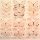 Floating Butterfly Posters by Katja Marzahn