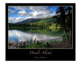 Denali National Park Photographic Print by J Wayne Pinkston