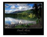 Denali National Park Photographic Print by J Wayne Pinkston