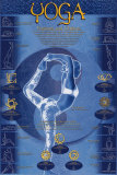 Yoga, Postures And Chakras Posters