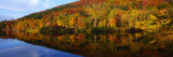 Connecticut River, Brattleboro, Vermont, USA Photographic Print by  Panoramic Images