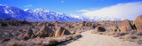 Road Through Owens Valley, California, USA Photographic Print by  Panoramic Images
