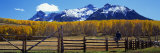Last Dollar Ranch, Ridgeway, Colorado, USA Photographic Print by Panoramic Images 