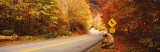 Autumn Road with Bear at Deer Crossing Sign, Vermont, USA Fotografisk trykk av Panoramic Images,