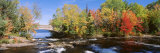 Trees Near a River, Bog River, New York State, USA Fotografie-Druck von Panoramic Images