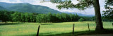 Meadow and Barbed Wire Fence, Cades Cove, Great Smoky Mountains National Park, Tennessee, USA Photographic Print by Panoramic Images 