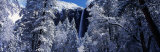 Bridal Veil Falls in Winter, California, USA Photographic Print by  Panoramic Images