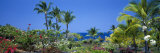 Kona Coast, Hawaii, USA Photographic Print by Panoramic Images