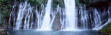 Water, Cascading, Mcarthur Burney Falls, California, USA Photographic Print by  Panoramic Images
