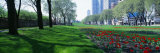 Public Gardens, Loop, Cityscape, Grant Park, Chicago, Illinois, USA Photographic Print by Panoramic Images