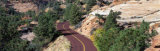 Road, Zion National Park, Utah, USA Photographic Print by  Panoramic Images
