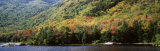 Deciduous Trees Along the Lake, White Mountain National Forest, New Hampshire, USA Photographic Print by  Panoramic Images