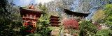 Japanese Tea Garden, Golden Gate Park, San Francisco California, USA Fotografisk trykk av Panoramic Images,