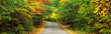Road, White Mountain Forest, New Hampshire, USA Photographic Print by  Panoramic Images