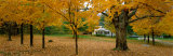 Autumn, Muskoka, Canada Photographic Print by Panoramic Images