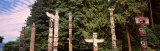 Totems, Stanley Park, Vancouver, Canada Photographic Print by  Panoramic Images
