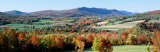 Fall Trees, Danby, Vermont, USA Photographic Print by  Panoramic Images