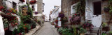 Saint Ives Street Scene, Cornwall, England, United Kingdom Photographic Print by  Panoramic Images