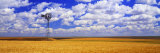 Windmill Wheat Field, Othello, Washington State, USA Photographic Print by  Panoramic Images