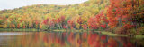 Savoy Mountain State Forest, Massachusetts, USA Photographic Print by  Panoramic Images