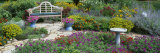 Park Bench in the Garden Photographic Print by  Panoramic Images