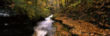 Buttermilk Creek, Ithaca, New York State, USA Stampa fotografica di Panoramic Images,