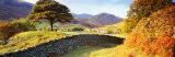 Lake District, United Kingdom Reproduction photographique par  Panoramic Images