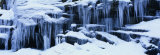 Icicles, Sierra Nevada Mountains California, USA Photographic Print by  Panoramic Images
