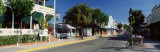 Duval Street, Key West, Florida, USA Photographic Print by  Panoramic Images