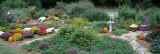 Fall Residential Garden Photographic Print by  Panoramic Images