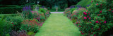 Gardens at Levens Hall, Cumbria, England, United Kingdom Photographic Print by  Panoramic Images