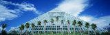 Pyramid, Moody Gardens, Galveston, Texas, USA Photographic Print by  Panoramic Images