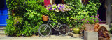Bicycle in Front of Wall Covered with Plants and Flowers, Rochefort En Terre, France Photographic Print by  Panoramic Images
