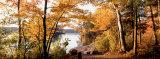 Sunset, Sacandaga Lake, Adirondack Mountains, New York State, USA Fotografisk trykk av Panoramic Images,