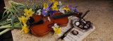 High Angle View of a Violin with Flowers Fotoprint van Panoramic Images,