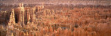 Aerial View of the Grand Canyon, Bryce Canyon National Park, Utah, USA Photographic Print by  Panoramic Images