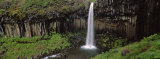 Waterfall in the Park, Svartifoss Waterfall, Skaftafell National Park, Iceland Photographic Print by Panoramic Images 