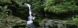 Panoramic View of a Waterfall, Ricketts Glen State Park, Pennsylvania, USA Photographic Print by  Panoramic Images