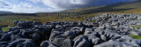 Rocks on a Landscape, Ribblehead Viaduct, North Yorkshire, England, United Kingdom Photographic Print by Panoramic Images 