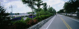 Trees Along the Road, Hudson River Park, New York City, New York State, USA Photographic Print by  Panoramic Images