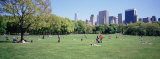 Group of People in a Park, Sheep Meadow, Central Park, New York City, New York State, USA Photographic Print by Panoramic Images