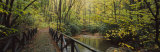 Footbridge Over a Pond in a Forest, Cucumber Run, Ohiopyle State Park, Pennsylvania, USA Photographic Print by Panoramic Images