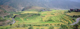 High Angle View of a Countryside with Terrace Rice Fields, Punakha, Bhutan Photographic Print by Panoramic Images 